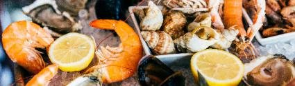 How to Safely Store and Handle Seafood at Your Restaurant