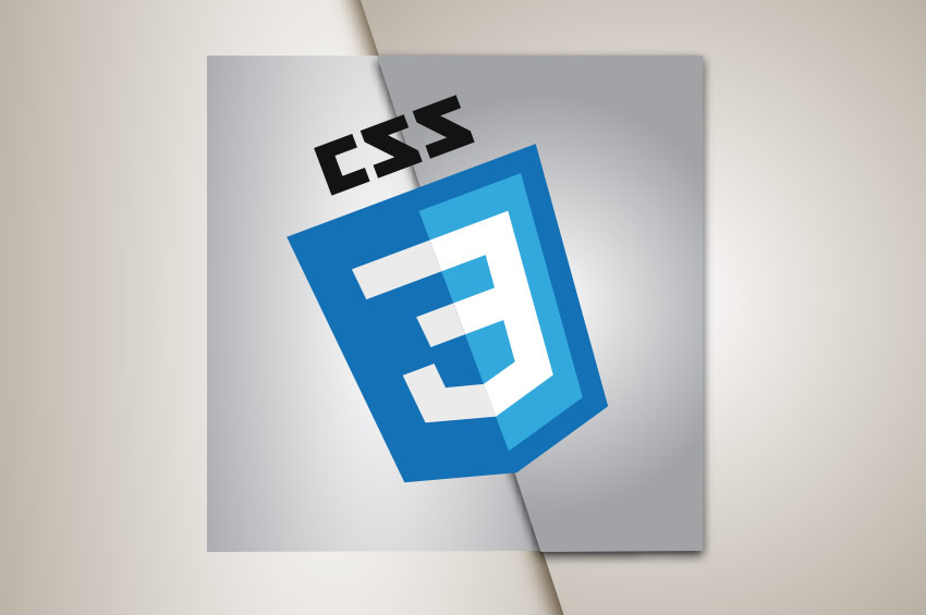Web Development CSS Beginner