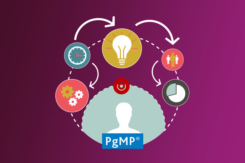 Project Management PMI-PgMP Certification Training