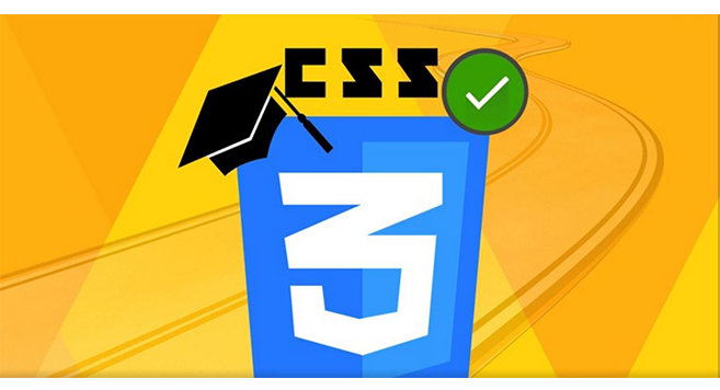 Introduction to CSS Web Development Bootcamp