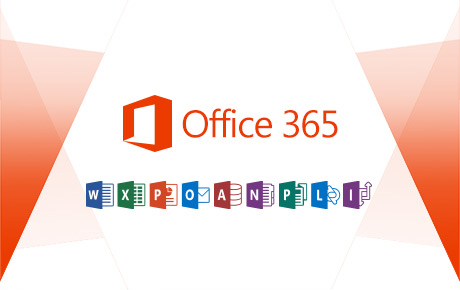 Microsoft Office 365 Administration Basics