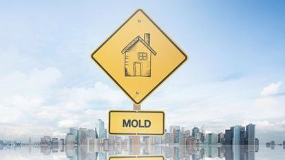 5 Tips to Controlling Structural Mold Problems