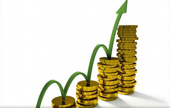 Profitability Strategies for small established Businesses